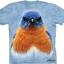 Pre.เสื้อยืดพิมพ์ลาย3D The Mountain T-shirt : Eastern Bluebird thumbnail 1