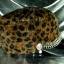 หมวกขนสัตว์นุ่ม ลายเสือโทนน้ำตาล ทรงหัวตัด มีโซ่ด้านหน้า thumbnail 3